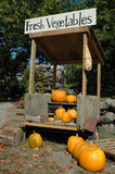 Roadside Pumpkin Stand Royalty Free Stock Photography