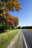 Roadside road in autumn Stock Photography