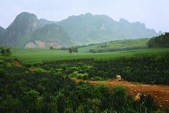 The roadside scenery. China, Guangxi China Royalty Free Stock Photography
