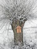 Roadside tree shrine. On old willow tree covered with snow and frost Stock Photo