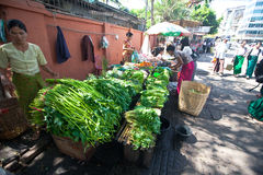 Roadside vegetable stalls selling fresh produce Royalty Free Stock Images