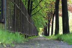 Roadside walk way in Bielsko-Biala Royalty Free Stock Images