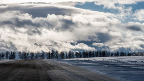 A roadside and a winter forest under the dramatic cloudy and sun. A landscape with the winter forest under the dramatic cloudy and sun Royalty Free Stock Photo
