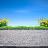 Roadside and Yellow flower Stock Image
