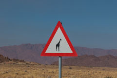Roadsign giraffe crossing in africa Stock Images