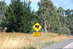 Roadsign for Koala Bear Royalty Free Stock Photo