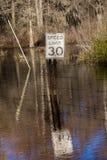 Roadsign mówi 30 mil na godzinę zalewają przy Caddo jeziorem, Wschodnim Ograniczenie, powodzie zdjęcia stock
