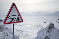 Roadsign with polar bear Stock Photography