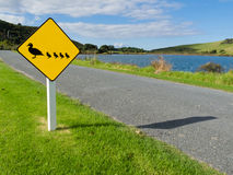 Roadsign Warning, Ducks With Ducklings Crossing Stock Photo