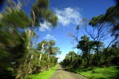 Roadtrip Royaltyfria Bilder
