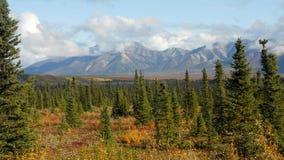 Roadtrip de Alaska fotografia de stock