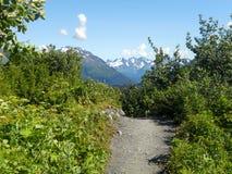 Roadtrip de l'Alaska Photographie stock libre de droits