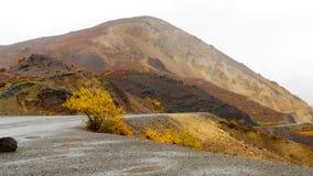 Roadtrip de l'Alaska Photo libre de droits