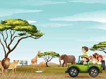 Free Roadtrip In The Field Full Of Animals Stock Photography - 58786862