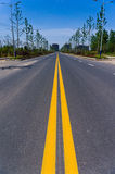 A roadway. Article two the yellow line and togetherc Royalty Free Stock Images