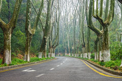 The roadway to the Memorial Hall garden of Dr.Sun Yat-sen Royalty Free Stock Images