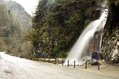 Road with waterfall in national park Rica, Abkhazia Stock Photography