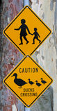 Roaf crossing sign Royalty Free Stock Photo