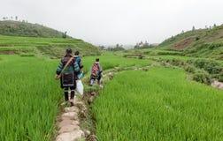 Roaming the hills of Sa Pa Stock Images