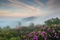 Roan Highlands Southern Appalachian Mountain Scenic Stock Photo