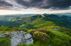 Roan Highlands Southern Appalachian Mountain Scenic Royalty Free Stock Images