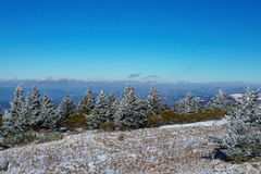 Roan Mountain Royalty Free Stock Images