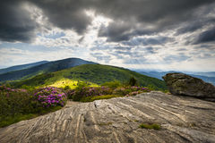 Roan Mountain Appalachian Trail Blue Ridge NC TN. Roan Mountain Appalachian Trail Blue Ridge Mountains Landscape along NC and TN border in Western North Carolina royalty free stock photo