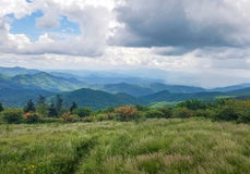 Roan Mountain Grassy Bald North Carolina stock foto's