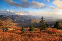 Roan Mountain NC Autumn Appalachian Trail Hike royalty-vrije stock foto