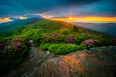 Roan Mountain Rhododendron Sunset TN NC Stock Foto
