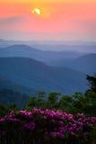 Roan Mountain Sunset Royalty Free Stock Image