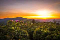 Roan Mountain Sunset. Sunset from Grassy Ridge overlooking the other Roan Balds, Jane Bald, Round Bald, Roan high knob. It was a very colorful sunset with the royalty free stock image