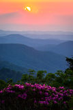 Roan Mountain Sunset. The rhododendrons in full bloom on a warm spring evening during an amazing sunset at the Roan highlands in the Blue Ridge Mountains royalty free stock image