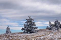Roan Mountain Winter Hike 4 foto de archivo libre de regalías