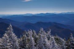 Roan Mountain Winter Hike 6 Images libres de droits