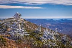 Roan Mountain Winter Hike 7 Image libre de droits
