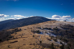 Roan Mountain Winter Hike Royalty Free Stock Photos