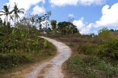 Roand on Nusa Penida Island Stock Image
