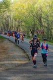 Group of Runners in the 2021 Blue Ridge Marathon