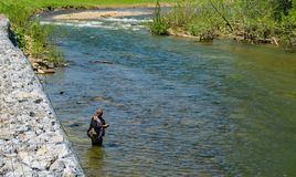 Trout Fishing on a Beautiful Spring Day. Roanoke County, Virginia USA - April 27th: A Fishman fishing for trout in the Roanoke River located in Roanoke County stock image