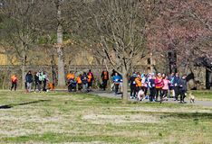 Large Group of Runners and Thier Pets at the annual Roanoke Valley SPCA 5K Tail Chaser. Roanoke, VA – March 23rd: A large group of runners and their dogs royalty free stock image