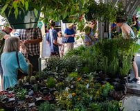 Crowds of Visitors at the Roanoke Farmers Market stock images