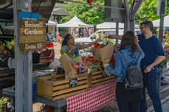 Boswell Gardden at Roanoke City Farmers Market royalty free stock photography
