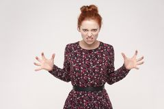 Roar! Anger ginger woman shout at camera. Bad amotions and feelings. Roar! Anger ginger woman shout at camera. Bad emotions and feelings. Isolated on gray stock images