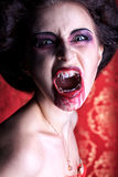 Roar vampire. Portrait of a bloodthirsty female vampire royalty free stock images