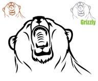 Roaring bear Royalty Free Stock Image