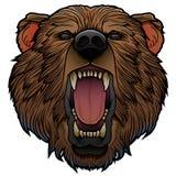 Roaring bear head. Roaring girzzly bear head isolated on white vector illustration vector illustration