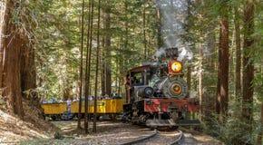 Roaring Camp` Dixiana Shay Steam Train Crossing Redwoods in Santa Cruz Mountains
