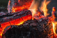 Roaring Campfire. The heat of the flames an embers make for a cozy campfire Royalty Free Stock Images