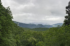 Roaring Fork Area, Great Smoky Mountains National Park, TN Royalty Free Stock Images